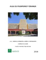 AULA-DE-PUERPERIO-Y-CRIANZA-2018