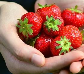 racion de fresas
